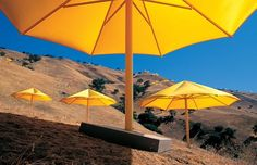 The Umbrellas, Japan-USA, 1984-91, Christo and Jeanne-Claud