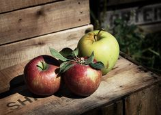 Apples - LOMO effect by JohnKnorr, via Flickr