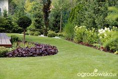 Ogród z lustrem - strona 168 - Forum ogrodnicze - Ogrodowisko