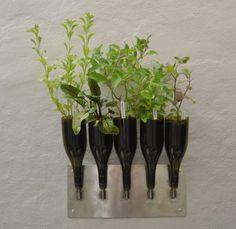 Herbs planter from Wine Bottle in garden 2  with Wine Planter DIY Bottle