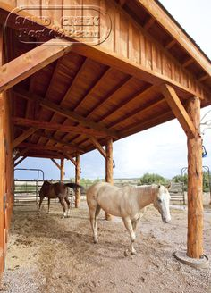 Horses love their post & beam barn!  https://www.facebook.com/pages/Sand-Creek-Post-Beam-Traditional-Post-Beam-Barn-Kits/66631959179