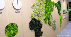 Innisfree, renowned for its naturalistic cosmetics, used natural moss to create a world map on a large wall in the office. :) Give nature to the office with Scandiamoss! World Map Wall Decor, Moss Wall, Innisfree, Warehouse, Herbs, Cosmetics, Create, Natural, Garden