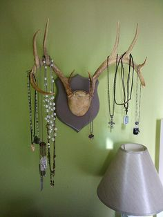antlers.....put some of these in my closet for jewerly