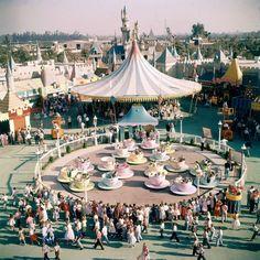 How did Disneyland and Walt Disney World look when you were a kid? Walt Disney World, Disney Parks, Magical Pictures, Disney Pictures, Old Pictures, Old Disney, Disney Fun, Punk Disney, Disney Movies