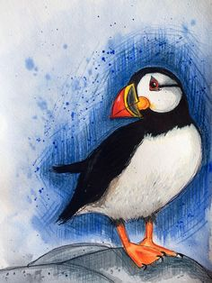 My little puffin watercolour and pencil crayon