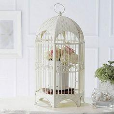 Lindaaaa forma de se usar uma gaiola