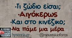 -Τι ζώδιο είσαι; Funny Greek, Funny Statuses, Greek Quotes, Messages, Humor, Humour, Text Posts, Text Conversations