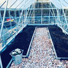 Duża szklarnia  Palram #szklarnia #greenhouse #ogrodnictwo #warzywa #vegies #gardening #gardendesign #gardeninspiration #gardenideas Louvre, Building, Travel, Viajes, Buildings, Destinations, Traveling, Trips, Construction