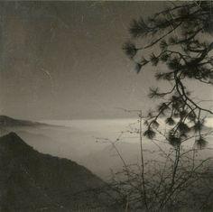 ©︎Sara Silks Oboro (Obscure mist)