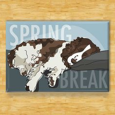 Springer Spaniel Refrigerator Magnet  Springer Spaniels love to find the nearest couch and make every day Spring Break.  • Springer Spaniel fridge magnet is 3x2 (8x5 cm) • Magnet is made out of metal with a thick laminate top • Strong, high-quality refrigerator magnet will last a lifetime  This design is also available as an art print: www.etsy.com/listing/123033210/springer-spaniel-art-print  This Springer Spaniel design is also available as an art print…