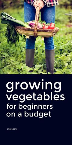 These tips for growing vegetables for beginners on a budget will help you with starting a garden cheaply in pots and containers even if your gardening in a small space in your backyard. These vegetable growing tips show you don't need fancy raised beds to get started and will help you pick the best seeds for fast growing veggies. #growingvegetables #vegetablegrowing #growyourownvegetables #vegetablegarden #startavegetablegarden #growingvegetablesforbeginners Starting A Vegetable Garden, Vegetable Garden For Beginners, Gardening For Beginners, Gardening Tips, Raised Garden Beds, Raised Beds, Vegetable Gardening, Organic Gardening, Garden Planning