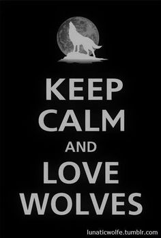 Keep calm and Be Wolf Be Wolf, Wolf Love, Wolf Spirit, My Spirit Animal, Beautiful Creatures, Animals Beautiful, All About Wolves, Keep Calm And Love, My Love