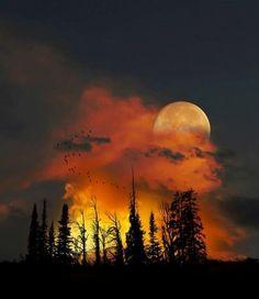 framed orange moon & clouds