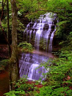 Deep within the Tennessee forest, the waters of a small stream plunge over the edge of Stillhouse Hollow Falls, falling 75 feet to the rocks below. May 29, 2008 in Tennessee, USA.