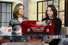 Aubrey Plaza (right) was the voice for Grumpy in her new film and appeared on NBC News with Natalie Morales - from the article Not so grumpy now! Cat that became an internet star has made its owner £64million - Dec 2014 #GrumpyCat #Tard #TardarSauce