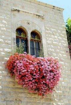 Vertical Rose Gardening ╰⊰✿ Window boxes ✿ Beautiful windows and flowers in the shape of a heart. Heart In Nature, Pink Nature, Garden Windows, Foto Art, Plantar, Window Boxes, Window Sill, Flower Boxes, Windows And Doors