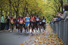 TCS Amsterdam Half Marathon