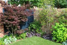 Top 10 best trees for small gardens - DIY Garden Deko Small Back Gardens, Small Trees For Garden, Small Cottage Garden Ideas, Garden Cottage, Small English Front Garden Ideas, Small Garden Planting Ideas, Small Landscape Trees, Very Small Garden Ideas, Plants For Small Gardens