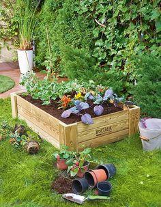 Caja de cultivo Vegetables, Plants, Diy, Biodegradable, Merlin, Patagonia, Gardens, Gardening, World