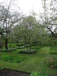 Levens Hall orchard gardens