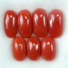 Calcium Carbonate, Red Coral, Stones And Crystals, Agate, Fire, Gardening, Gemstones, Pearls
