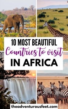 Countries To Visit, Cool Countries, Beautiful Places To Visit, Cool Places To Visit, Africa Destinations, Travel Destinations, The Great Migration, African Countries, African Safari