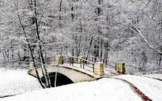 Image result for winter paths