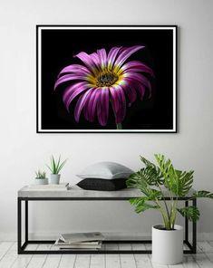FLOWER PHOTOGRAPHY Botanical Wall Art Dark Floral Print Mauve | Etsy Purple Wall Decor, Purple Walls, Botanical Wall Art, Flower Photography, Home Decor Items, Mauve, Beautiful Homes, Floral Prints, Tapestry