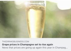 Grape prices in Champagne set to rise again Flute, Champagne, Drinks, News, Drinking, Beverages, Drink, Flutes, Tin Whistle