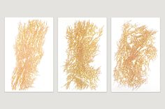 Jeanne Masoero - Magnetic Field VII, VIII, X acrylic on canvas, 150 x each Magnetic Field, Past, Abstract, Canvas, Gallery, Artwork, Summary, Tela, Past Tense
