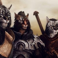 "Khajiits -- I love Khajiits and totally wish my character could marry Kharjo!! ""May you walk on warm sands."" SKYRIM"