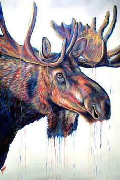 Velvet Moose Canvas Print by Teshia Art. All canvas prints are professionally printed, assembled, and shipped within 3 - 4 business days and delivered ready-to-hang on your wall. Choose from multiple print sizes, border colors, and canvas materials. Bear Paintings, Wildlife Paintings, Wildlife Art, Acrylic Painting Canvas, Canvas Art, Canvas Prints, Buffalo Painting, Moose Pictures, Arte Pop