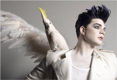New (Old) Photo Shoot! | Adam Lambert 24/7 News