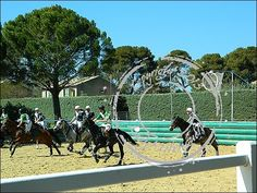 Uzes_haras_horse-ball (9)