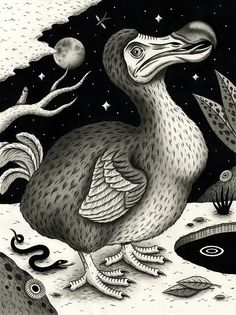 "jonmacnair: ""Dodo Bird"" India ink on paper x 2016 this original… Alien Creatures, Prehistoric Creatures, Bird Drawings, Animal Drawings, Surealism Art, Le Dodo, Extinct Animals, India Ink, Black And White Drawing"
