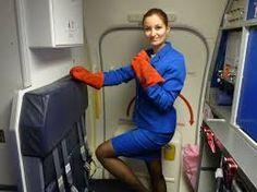 Flight attendants sexy google search