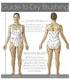 Image result for what direction lymph massage