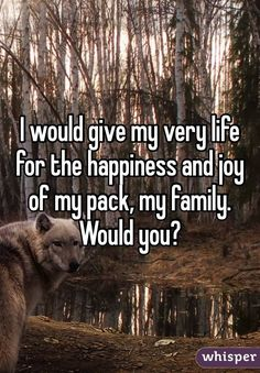 I would give my very life for the happiness and joy of my pack, my family.
