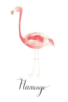 Flamingo by LouiseDeanDesign on Etsy