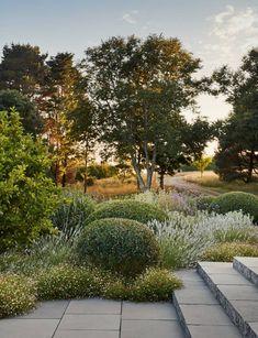 Perennial Flower Gardening - 5 Methods For A Great Backyard Dan Pearson Little Dartmouth Garden House and Garden Back Gardens, Outdoor Gardens, Amazing Gardens, Beautiful Gardens, Dan Pearson, Nachhaltiges Design, Design Ideas, Coastal Gardens, Natural Garden