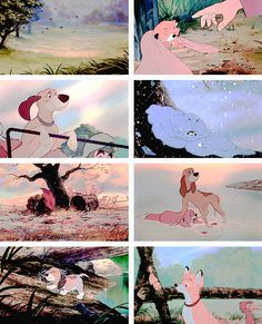 """""""Darling, forever is a long, long time, and time has a way of changing things."""" #thefoxandthehound"""