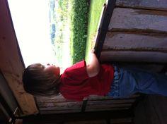 Bea ammira il paesaggio dalla casa sull'albero