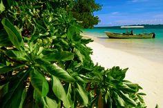 palau island | Boat moored at beach Island, Palau | Islands of Yap & Palau