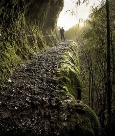 Eagle Creek Trail, Oregon, USA