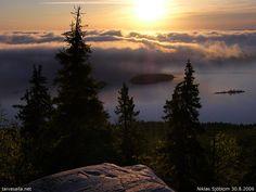 Koli national park right after sunrise.