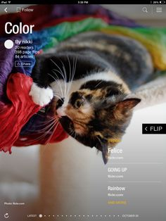 Flip through Color by nikki http://flip.it/uzGD4