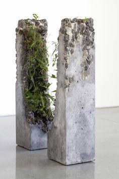 Jamie North Fills Concrete With Australian Plants   iGNANT.com
