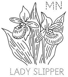 Minnesota Lady Slipper   Flickr - Photo Sharing!