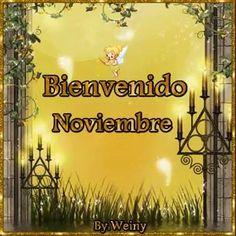 Resultado de imagen de bienvenido noviembre