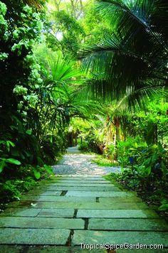 Tropical Spice Garden: Penang, Malaysia